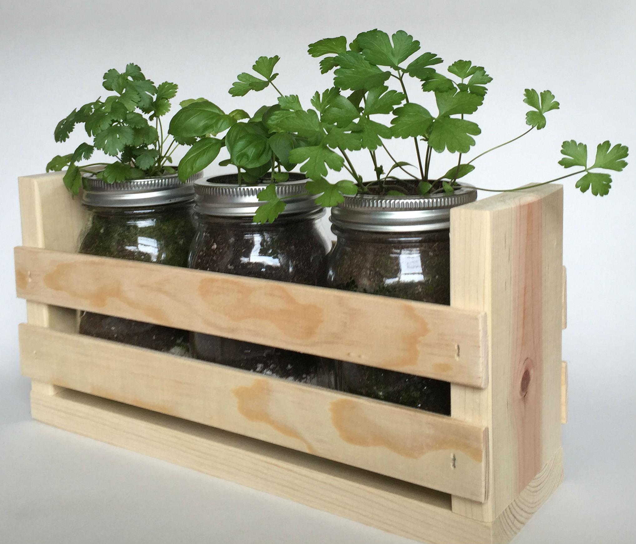 Indoor Kitchen Herb Garden Kit Images Of Indoor Culinary Herb Garden Kit Garden And Kitchen